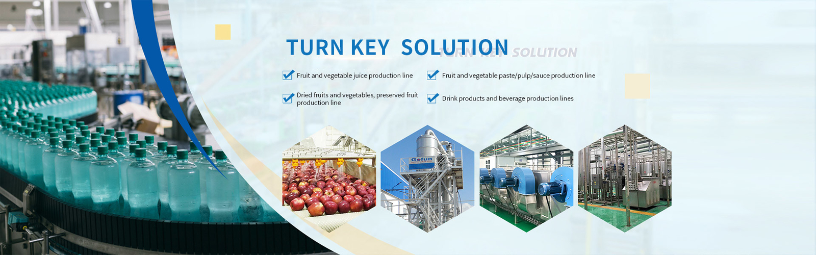 China best Vegetable Processing Line on sales