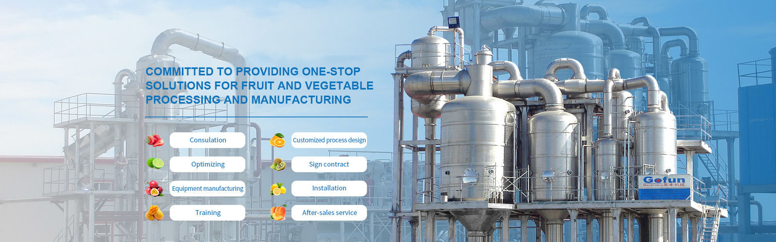 China best Fruit Processing Line on sales