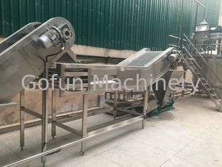 Good Quality Fruit Processing Line & High Performance Fruit Processing Line Juice Production Machine Esay Use on sale