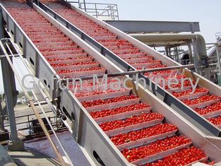 Good Quality Fruit Processing Line & Turnkey Solution Vegetable Processing Line Safety For Industrial Usage on sale