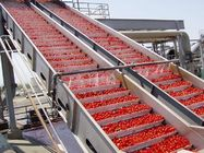 China PLC Control Food Processing Machine Tomato Processing Line Water Cycling company