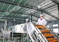 China HPP Citrus Processing Line / 440V Lemon Processing Plant Easy Operation company
