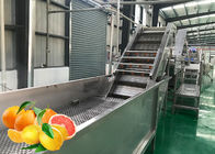 China Professional Tangerine Citrus Processing Equipment 5T/H  ISO Certificate company