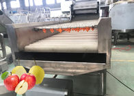 Professional Pear Chips Apple Processing Line 440V Turnkey Project
