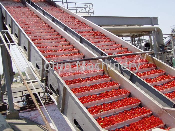 Turnkey Solution Vegetable Processing Line Safety For Industrial Usage