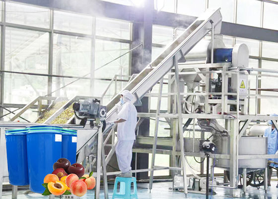 Professional Peach Processing Plant Plum Concentration Processing Line