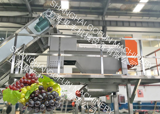 China 20 T/H Stable Grape Juice Processing Line Extractor Vacuum Pressing System factory