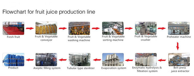 High Performance Fruit Processing Line Juice Production Machine Esay Use